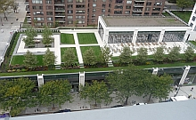 Green Roof at 808 Columbus Ave. NYC