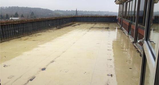 Kemper System Underwrites Roof Refurb Success At Royal Sun