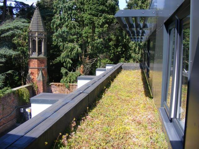 Maturing Green Roof at Cheadle Care Home | Kemper System